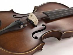 Electro Acoustic Violin