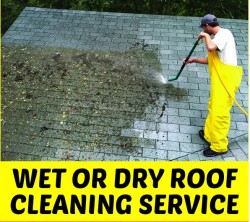 Wet or Dry Roof Cleaning