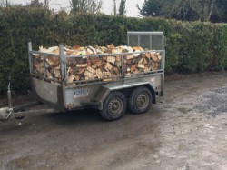 Ash timber for sale.