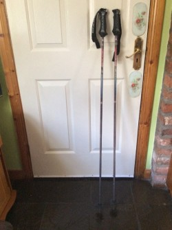 Goog hill walking poles
