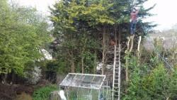 All gardening and powerwashing work done