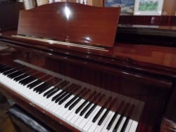 GRAND PIANO BY AUGUST FORSTER