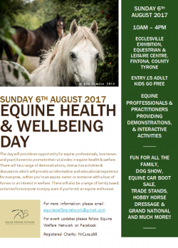 Equine Health & Wellbeing Day