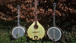 String instrument Repairs