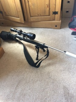 Ruger 10/22 semiauto rifle