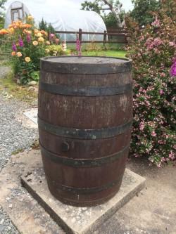 Vintage large wooden Barrell.