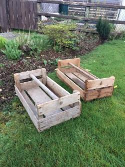 Vintage wooden potato seed boxes.