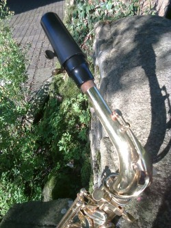 Stagg 77-sa Alto Saxophone key Eb