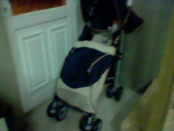 Chicco Stroller Pushchair