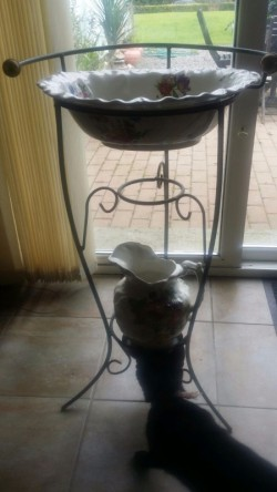 Antique victoriana style wash stand and bowl