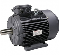 electric motor  WANTED