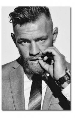 Conor McGregor  Silk Cloth Posters 4 Posters Available Prices From $9.95