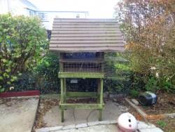 Bird House for sale