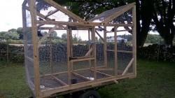 Magpie + Crow Ladder Trap