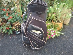 Stylish Golf Bag.