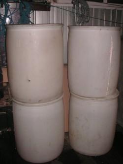 40-gall White Barrels