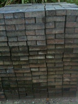 Paving bricks for sale