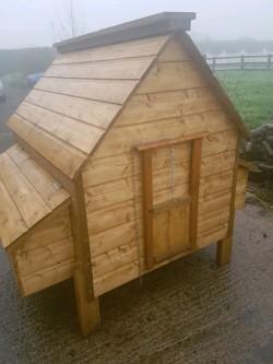 Large Hen Ark