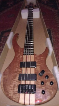 NEW Deluxe 5 String Thru Neck Electric Bass Guitar With Active Pick ups