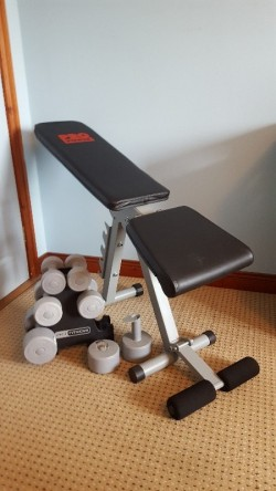 Pro power bench and dumbbells