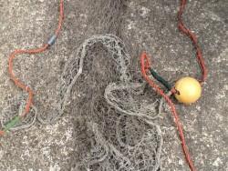 Herring drift net