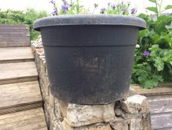 60 litre- Large Black container for a tree etc