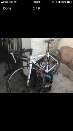 womens trek bike racing bike bicycle  Frame is 50