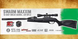 Gamo air rifle