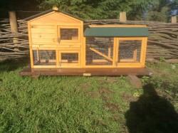 Chicken Coop / Rabbit Hutch
