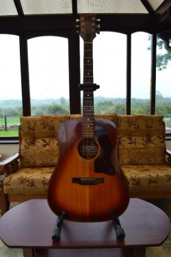 GibsonJ45 (deluxe) - vintage acoustic guitar