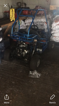 110cc buggy for sale