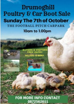 The Drumoghill Poultry & Car Boot Sale