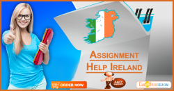 Instant and Premium Assignment Writing Help Ireland by Case Study Help