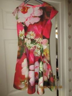 Designer Ted Baker dress.