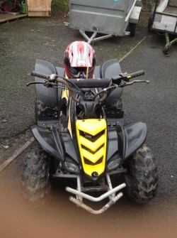 For Sale Viper Quad