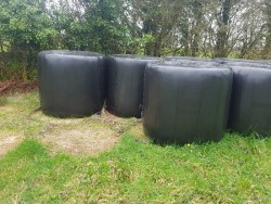 Round silage bales