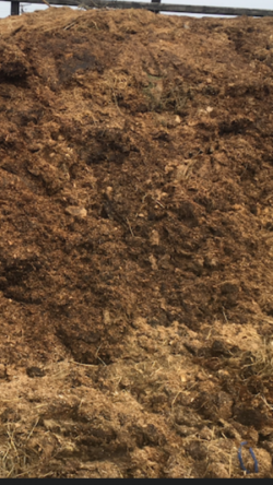 HORSE MANURE For FREE