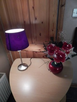 lamp and light up flower decoration