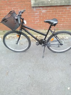 Adult Bicycle with front basket
