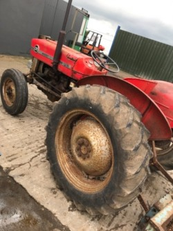 135 or 35 3 cylinder WANTED