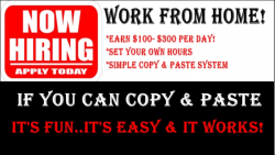 If You can Copy & Paste You Can do this Business
