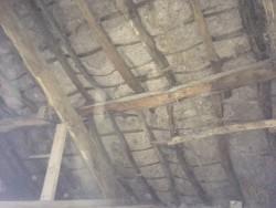 Wanted- Bog Oak for Roof Beams