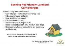 Seeking a pet friendly landlord in Carrickfergus