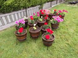 Flower tubs.
