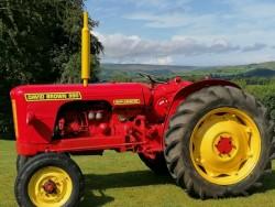 David Brown Red 990