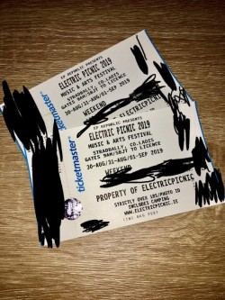 2 weekend electric picnic camping tickets