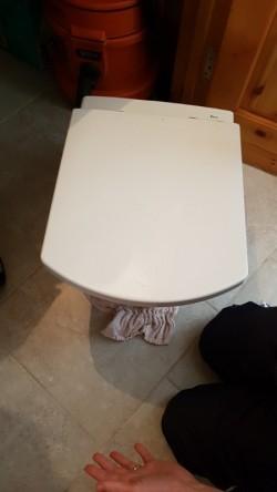 Roca wall mounted toilet