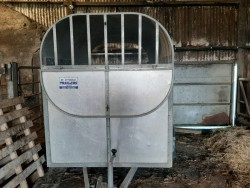 8x4'6 livestock trailer