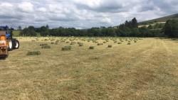 small bales of hay