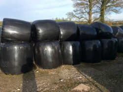 Round baled hay and silage
